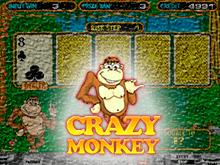 Crazy Monkey от Igrosoft для посетителей официального казино